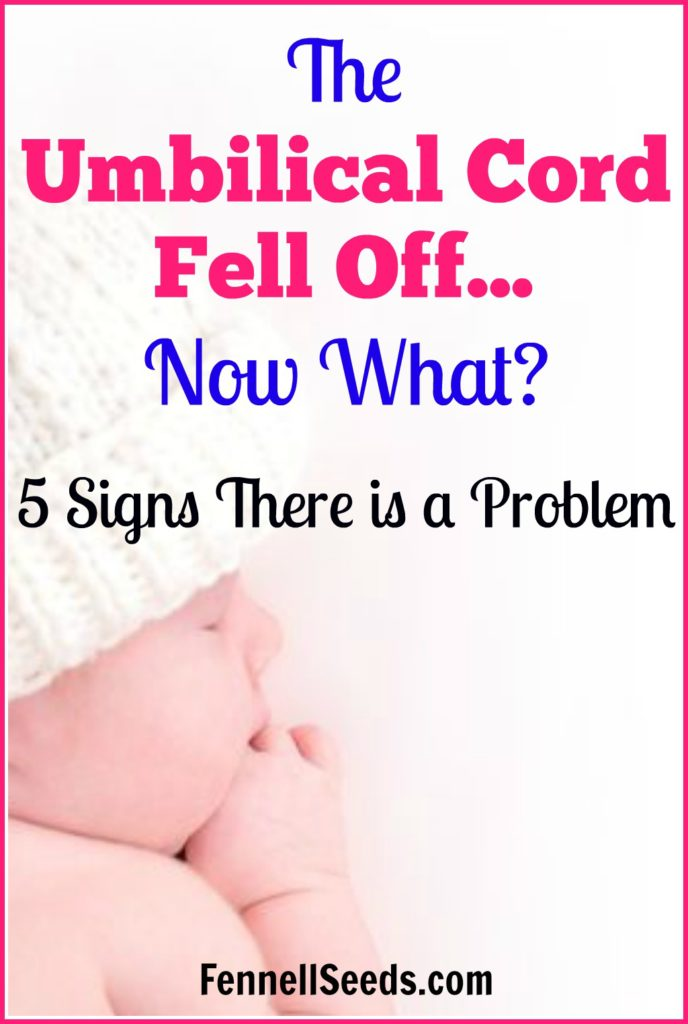 Umbilical cord   umbilical cord falling off   when umbilical cord falls off   umbilical cord fell off   umbilical cord