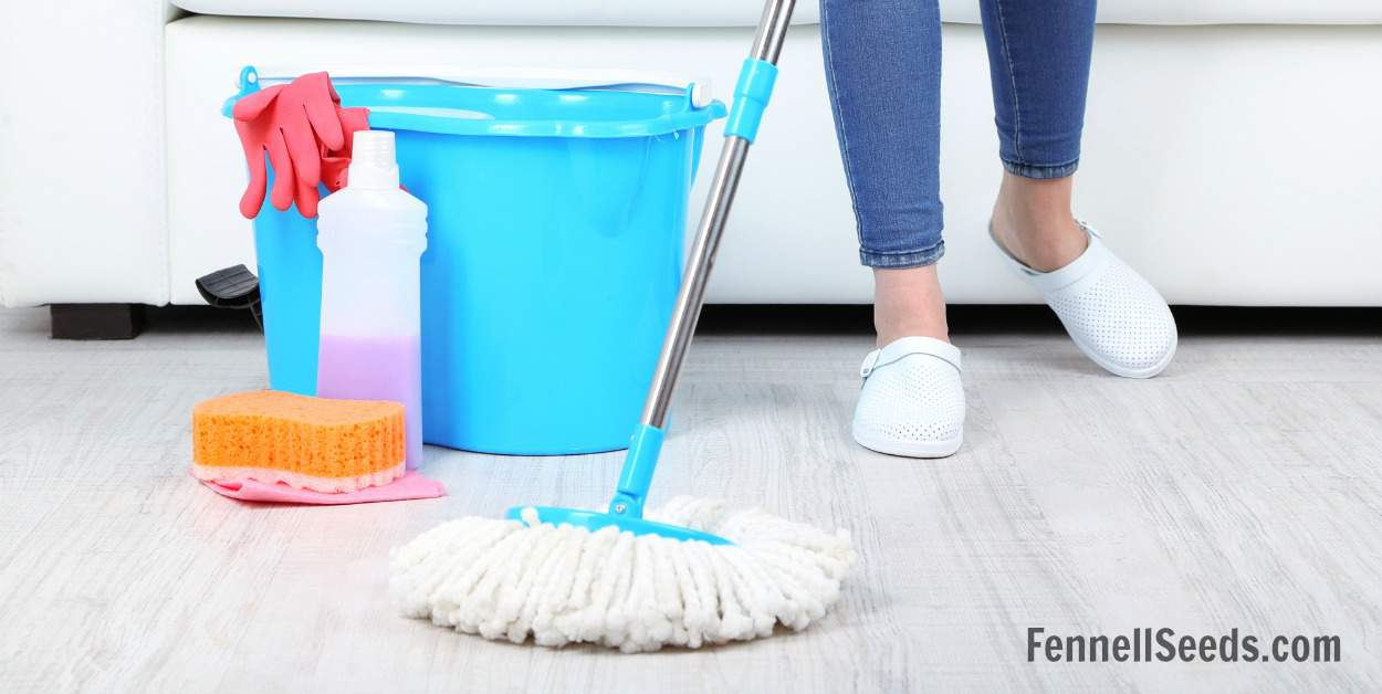 FlyLady routines and how they helped me get my house clean and decluttered.